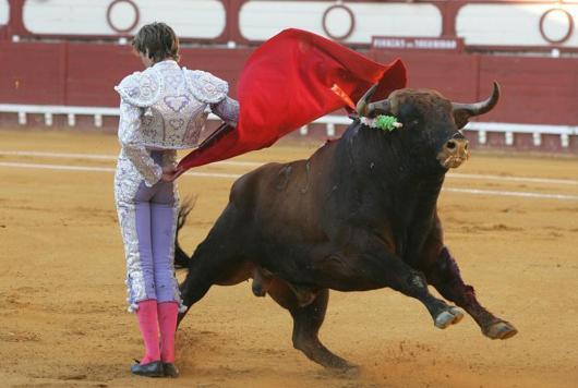 toros-y-toreros1.jpg